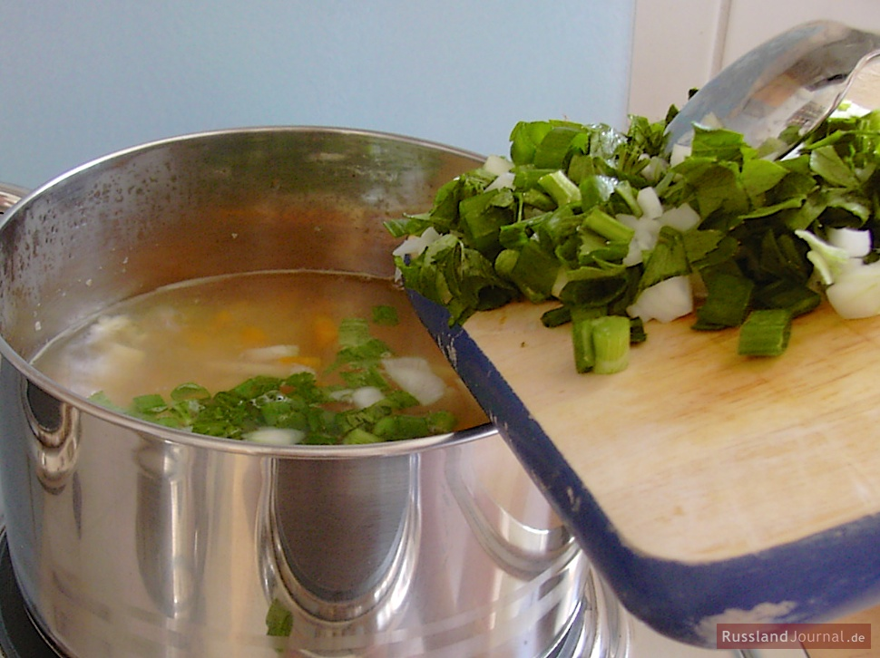 Add other vegetables (onions, celery and parsnip green, green onions) and let everything simmer for another 10 minutes.