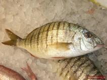 Fisch für Ucha schnell zubereiten