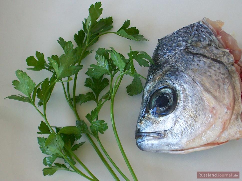 Fischkopf mit Petersilie