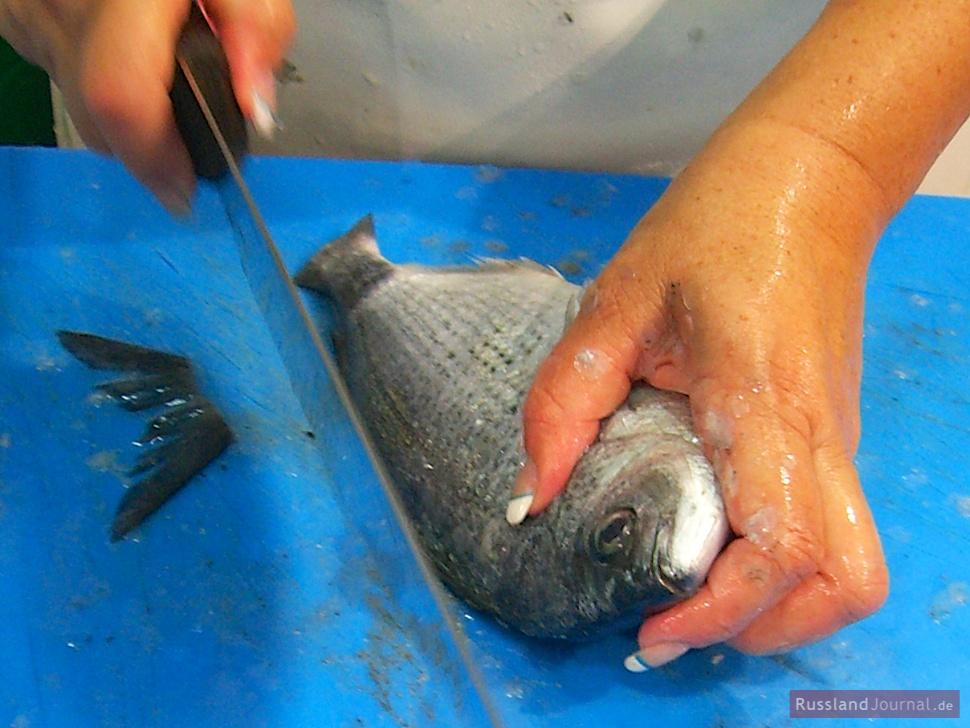 Fisch säubern für Ucha