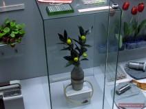 Zitronen-Baum