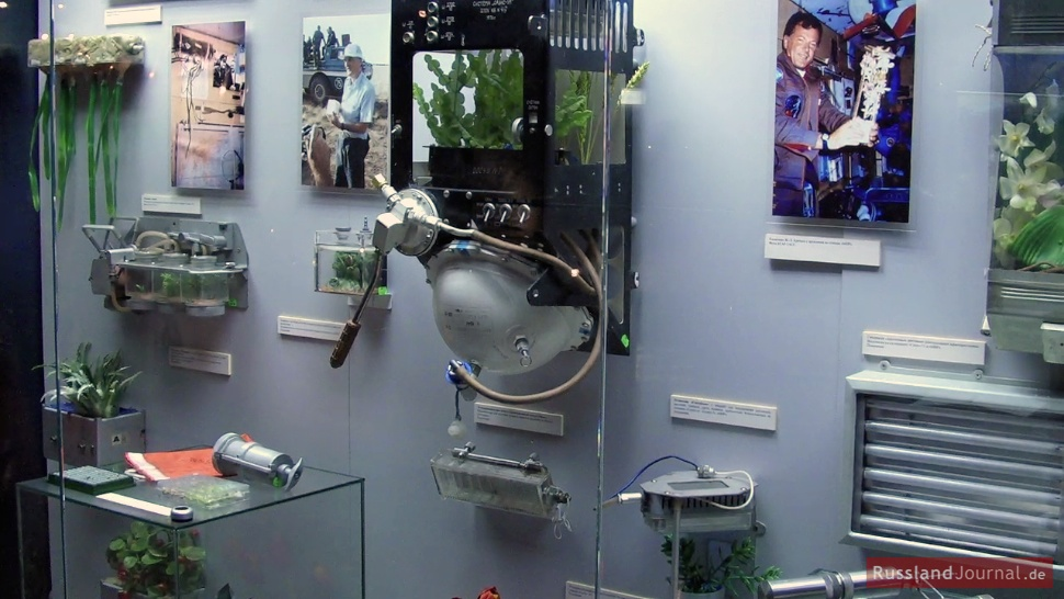 Biologische Experimente im Weltall