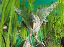 Ein Fabel-Vogel