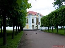 Allee zur Eremitage in Peterhof