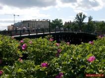 Die Kronwerkbrücke führt zum Eingang im Nordwesten der Peter-Paul-Festung