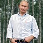 Wladimir Putin in einem typisch russischen Birkenwald