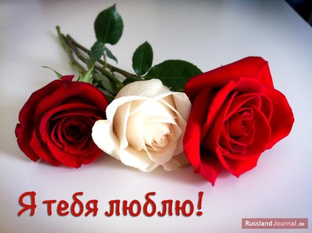 Valentika mit Rosen zum Valentinstag