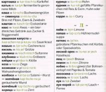 Auszug aus dem Speiseglossar aus dem Lonely Planet Russisch Reise-Sprachführer