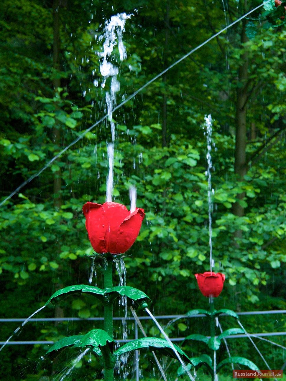 Tulpen der Scherz-Fontänen