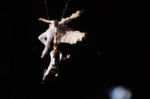 Dima Bilan in Weiß schwebt über die Bühne