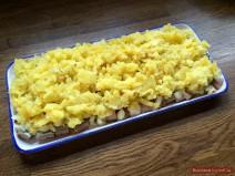 3 Schichten: Hering, Kartoffel und Zwiebel