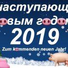 Zum kommenden neuen Jahr 2019 mit dem gelben Erde-Schwein