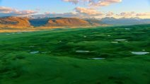 grünes Altai Gebirge